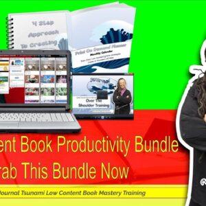 Low Content Book Productivity Hacks Bundle - Q4 Done Right
